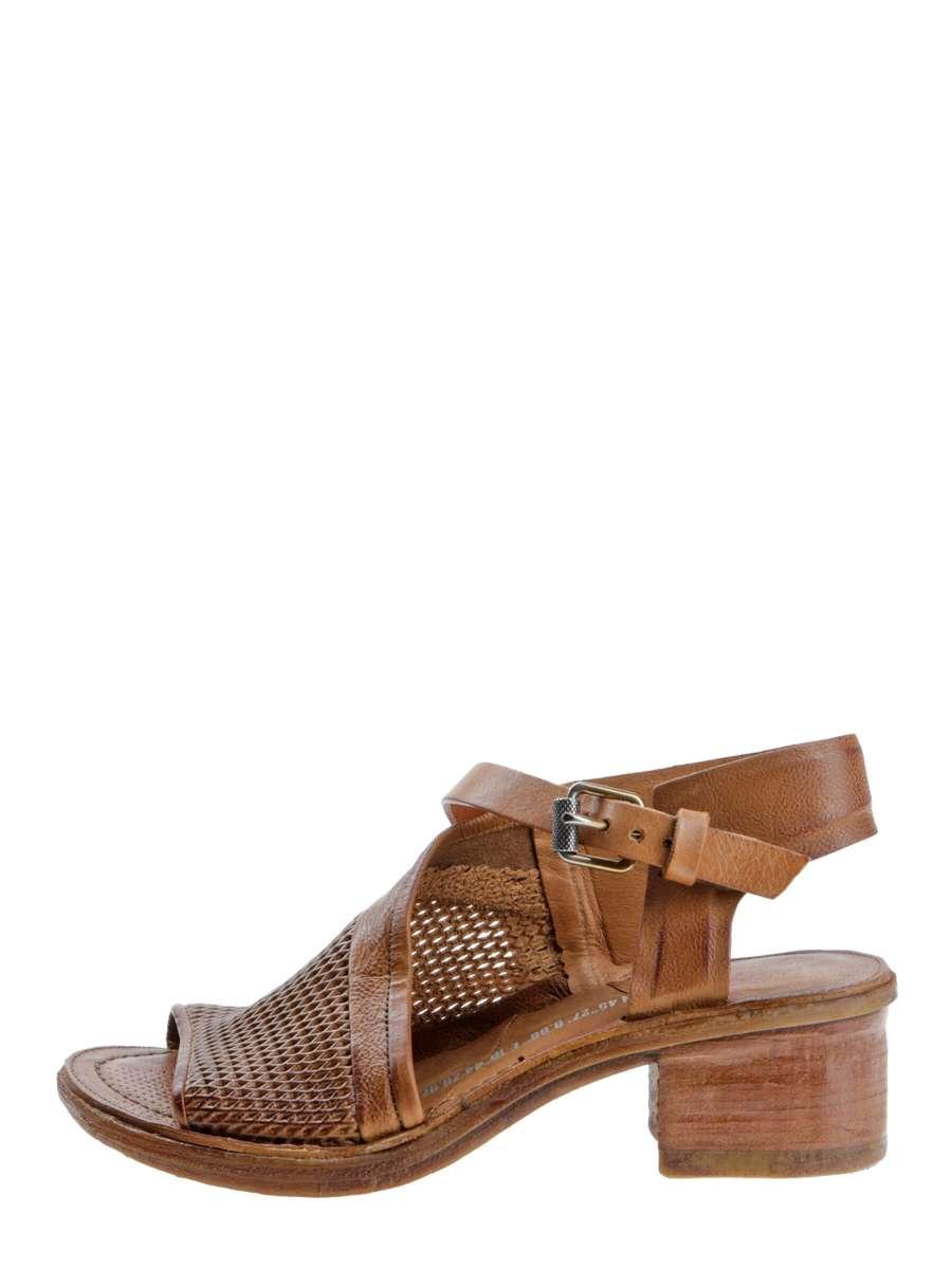 Sandals tiger